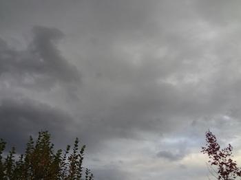 2015-10-29-1.jpg