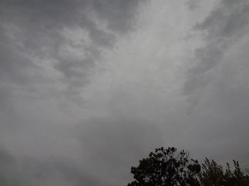 2015-11-09-1.jpg