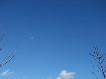 2017-01-31-1.jpg