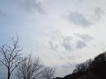 2017-02-22-1.jpg