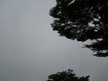 2017-06-29-1.jpg