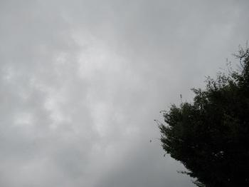 2017-08-28-1.jpg