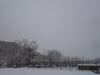 2018-02-12-1.jpg