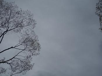 2018-04-23-1.jpg