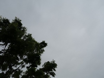 2018-05-08-1.jpg