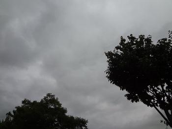 2015-08-26-1.jpg