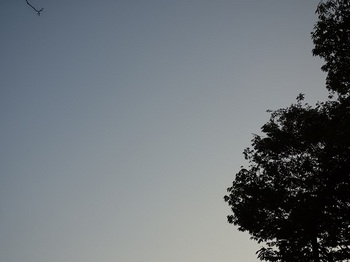 2017-09-25-2.jpg