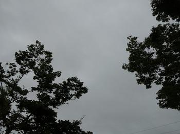 2018-08-06-2.jpg