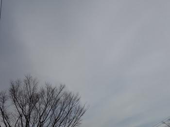 2019-02-15-1.jpg