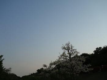 2019-05-11-1.jpg